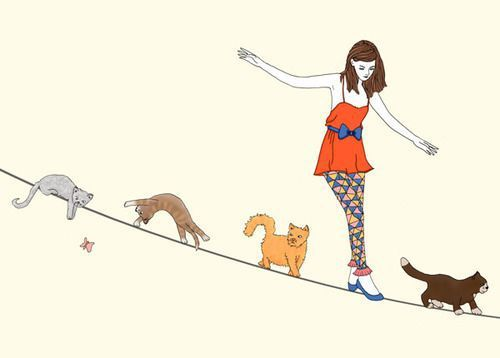 Cat lady and her cats