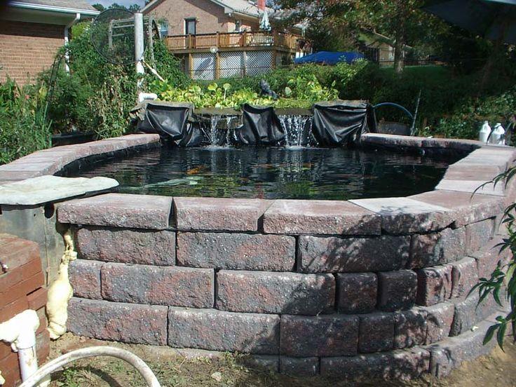 40 best images about koi pond on pinterest for Cinder block pond ideas