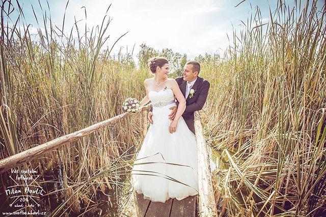 Ještě jedna fotka z uplynulého víkendu... Svatba Edity a Honzy uprostřed jihočeské přírody na hzázích rybníků Víra, Láska a Naděje... #svatba #wedding #svatebnifoto #weddingphoto #svatebnifotograf #weddingphotographer #zenich #nevesta #jiznicechy #jihoceskerybniky #rybniklaska #romantika #romantic #laska #love #rybnikvira #vira #rybniknadeje #nadeje #mamsvojipracirad #fotiltomilan