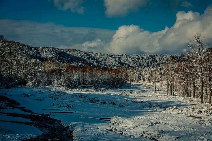 gábor erdélyi