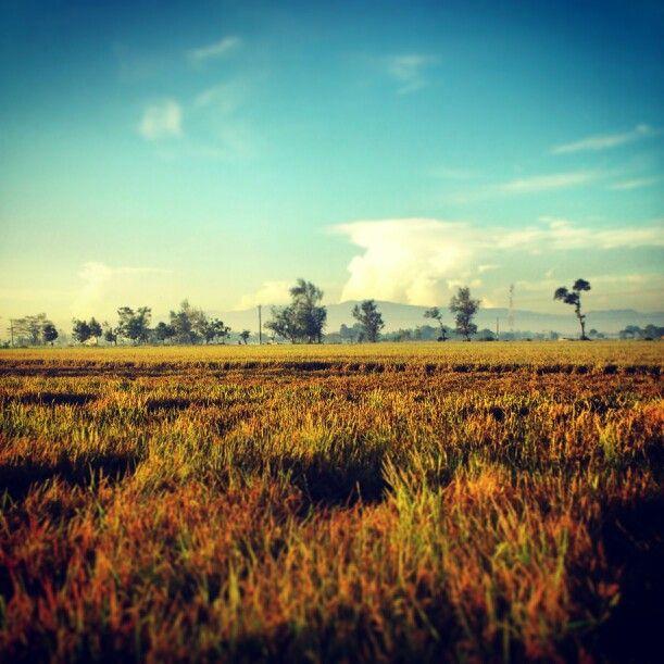 Klaten,indonesia