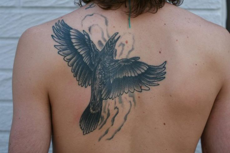 17 best images about crow raven tattoos on pinterest for Electric lotus tattoo