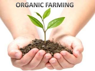 Organic Farming | Sustainable Agriculture: Introduction to Organic Farming