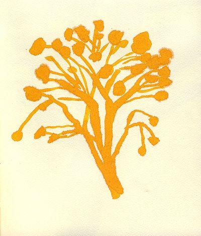 leanne shapton: Illustration Artists, Art Crafts, Foliage Illustration, Art Inspiration, Google Search, Illustration Pattern, Leanne Shapton, Art Illustration, Art Photos Illustration