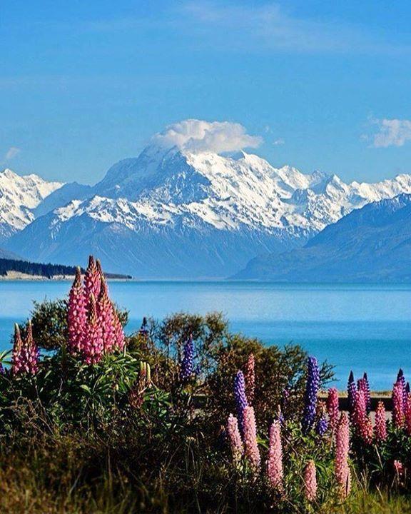 Lake Pukaki New Zealand |  Nico Say Yes To Adventure