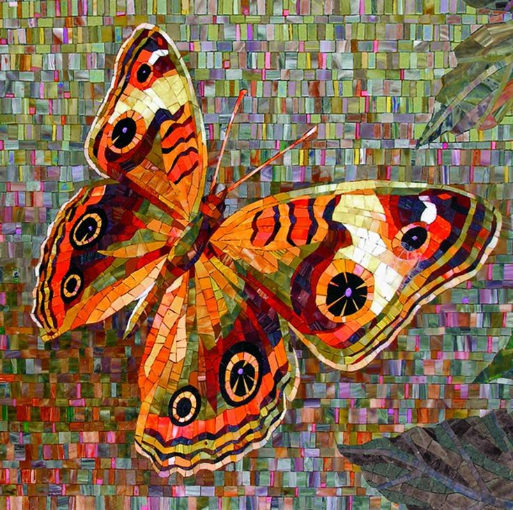 Мозаичная бабочка