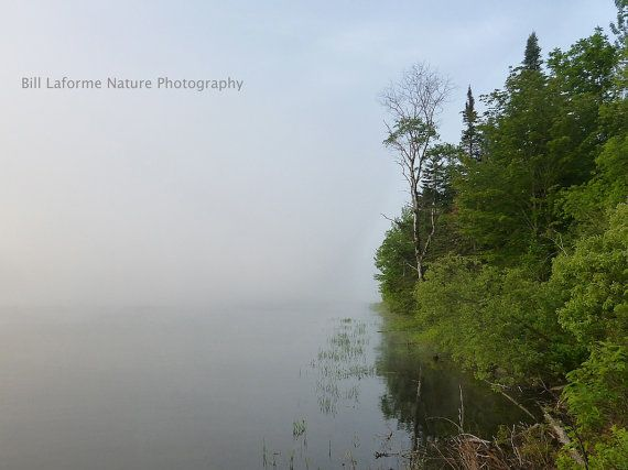 Serene morning on Lake Francis NH 11x14 matted by SceneryForYou, $25.00