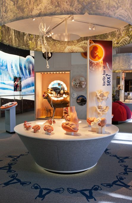 The Human Animal Exhibit