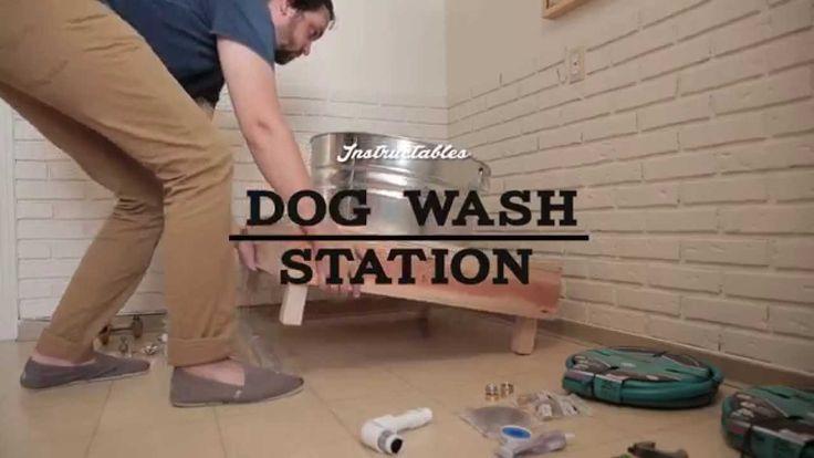 15 best dog washgarden wash images on pinterest dog wash dog washing station solutioingenieria Gallery