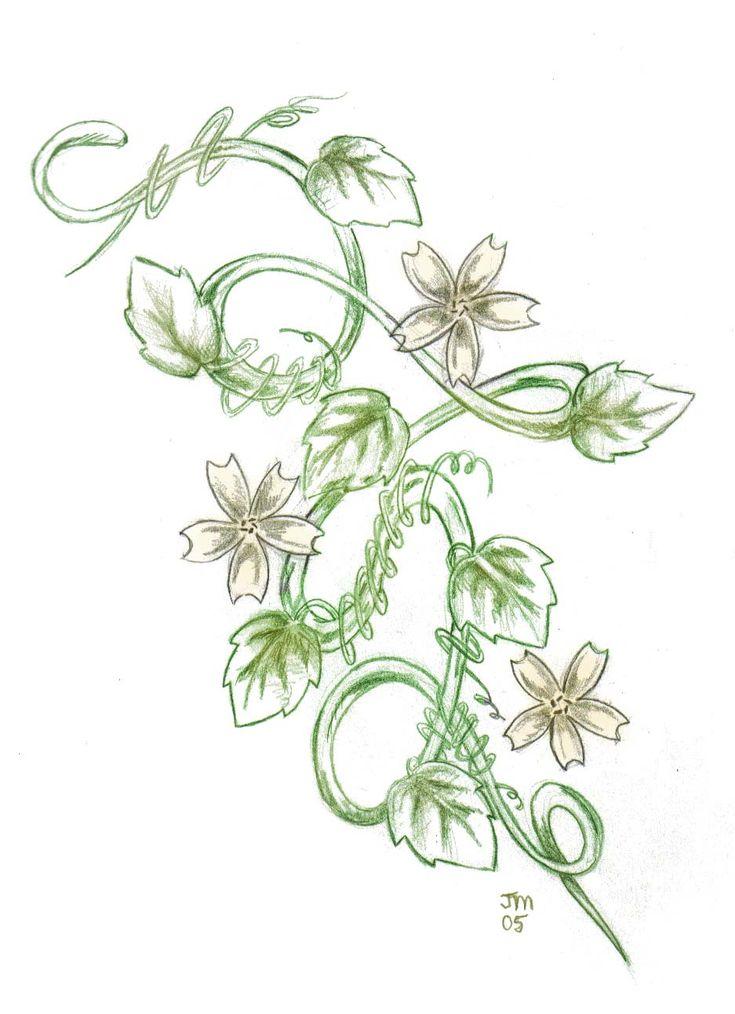 Vine Designs Art : Best ideas about flower vine tattoos on pinterest