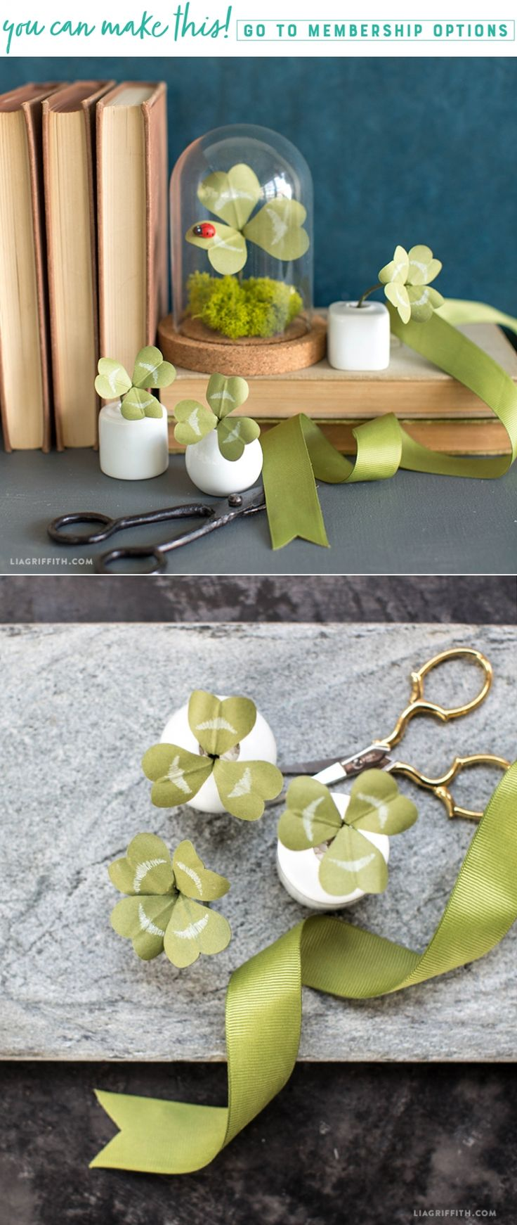 Lucky Clovers  These adorable potted paper clovers are super simple to make. Hide them around the house for a fun game for your little leprechauns; whoever finds the 4 leaf clover wins a prize! https://liagriffith.com/lucky-paper-clover/  * * * #clover #fourleafclover #fourleafclovers #stpatricksday #green #houseplant #houseplants #stpatricksday2018 #diy #diycraft #diycrafts #diyproject #diyprojects #diyhome #diyholiday #diydecor #holiday #diyhomedecor #leprechaun #luck #lucky #goodluck…