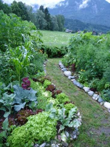 Suport a self-sufficiency-project in Tyrol/ Austria - workaway.info