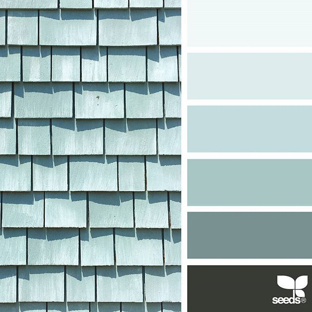 today's inspiration image for { color shingle } is by @suertj ... thank you, Sue, for another inspiring #SeedsColor image share!
