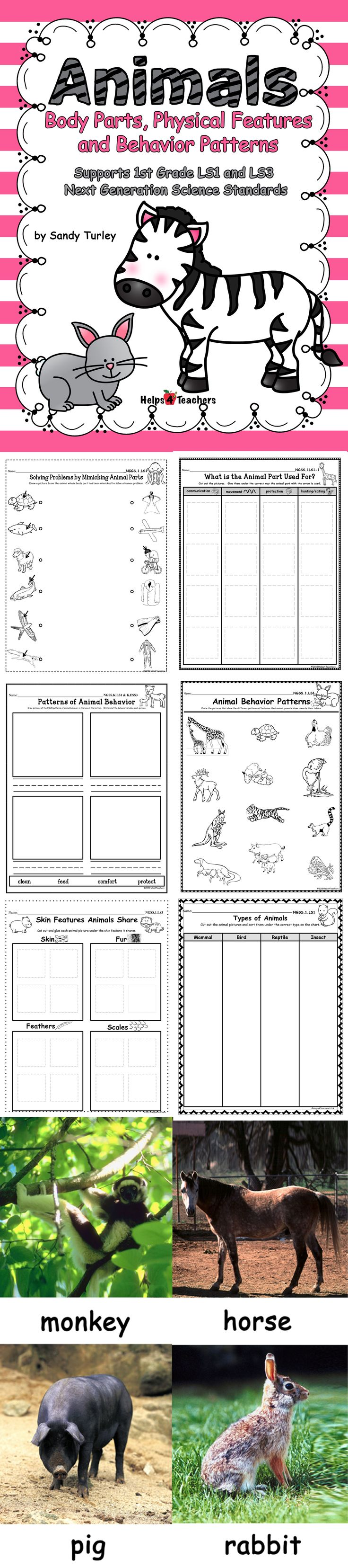 $ SPECTACULAR! 118 pages of Activity sheets and photographs needed to support lessons on Animals that support the 1st Grade Next Generation Science Standards  LS1 and LS3  Activity sheets included are:  - Solving Problems by Mimicking Animal Parts  - What is the Animal Part Used For?  - Patterns of Animal Behavior  - Animal Behavior Patterns (parents & offspring) - Skin Features Animals Share - Types of Animals (Features shared: mammal, reptile, bird, and insect