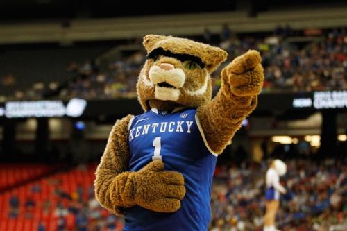 Kentucky Basketball Uk Has Second Best Odds To Win: 48 Best UK WildCats Images On Pinterest