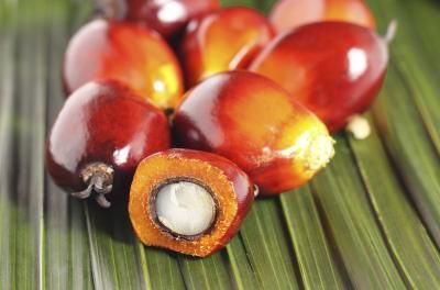 Red Palm Oil for hair & skin ---- Livestrong.com