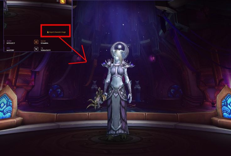 Artists just found out you can view fullscreen char on battle.net #worldofwarcraft #blizzard #Hearthstone #wow #Warcraft #BlizzardCS #gaming