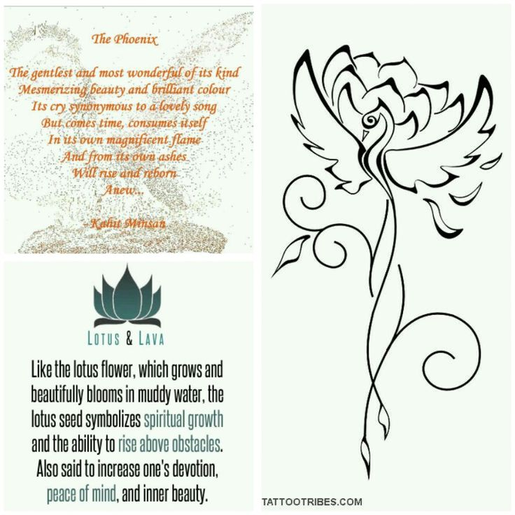 This will be my next ink!! Profoundly meaningful to me. And the Phoenix is also another symbol for my zodiac, Scorpio.