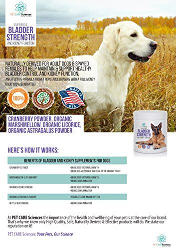 Best Premium Bladder Strength & Kidney Function Chews. Naturally Derived for Adult Dogs & Spayed Females to Help Maintain & Support Healthy Bladder Control, Dog Incontinence. Made in USA.55 Soft Chews   Check it out-->  http://mypets.us/product/best-premium-bladder-strength-kidney-function-chews-naturally-derived-for-adult-dogs-spayed-females-to-help-maintain-support-healthy-bladder-control-dog-incontinence-made-in-usa-55-soft-chews/  #pet #food #bed #supplies