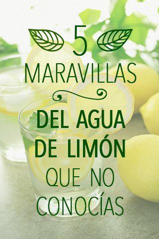 5 Maravillas del agua de limón que no conocías - Cooltasti.co  El limón es una fruta extraordinaria por su elevado número de nutrientes y vitaminas que aportan a nuestra salud mucha vitalidad y curación natural.