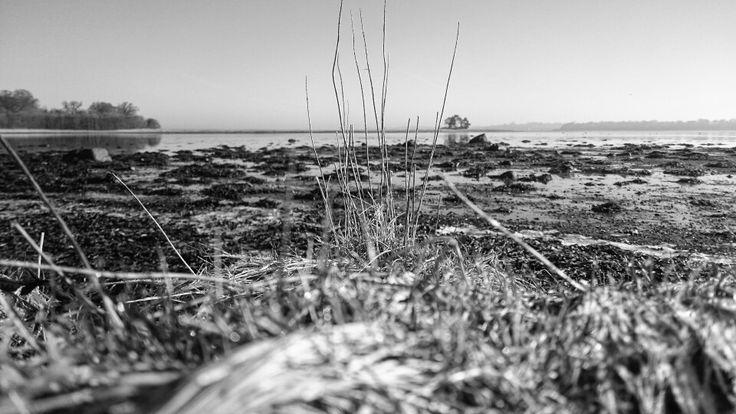 Isefjorden