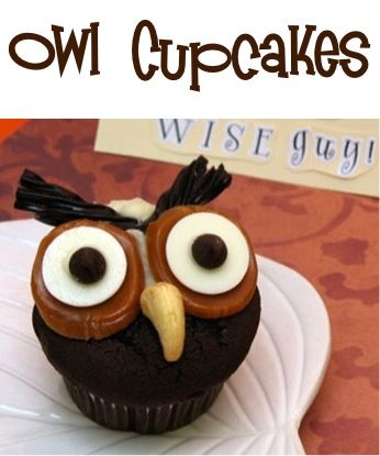 How to Make Owl Cupcakes! {perfect for your Fall parties ~ this is such a fun treat to hoot and holler about!} #owlsHoot Owls, Fall Parties, Fall Food, Owls Cupcakes, Fun Treats, Cupcakes Recipe, Disney Cupcakes, Owl Cupcakes, Halloween Treats