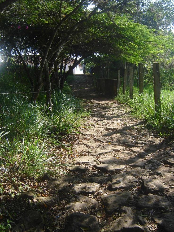 Camino Real a Guane