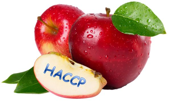 HACCP is a food safety management system that is systematic and preventive. It's recognition by international HACCP Alliance, the United Nations international standards organization for food safety. BD food safety provides HACCP training by professional high skilled coach.