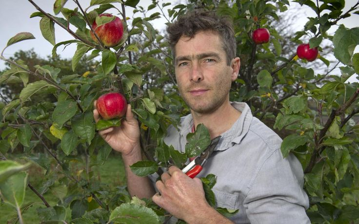 How one man hopes to put delicious fruit back in our hedgerows