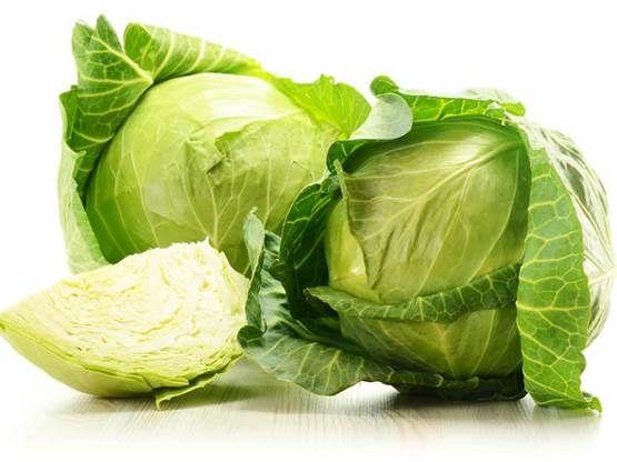 Bibit Sayuran Yang Cepat Tumbuh, Bibit Sayuran Eceran, Bibit Sayuran Unik, Bibit Sayuran Impor, Bibit Sayuran Online, Harga Bibit Sayuran Murah - HP 0856-4347-4222 -