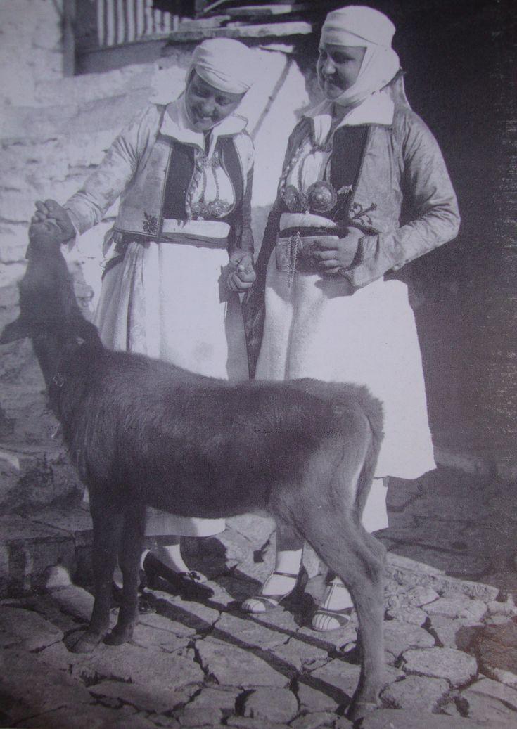 Pogoni, Epirus Πωγώνι, Δελβινάκι 1937. Φωτ.Σπ. Μελετζή