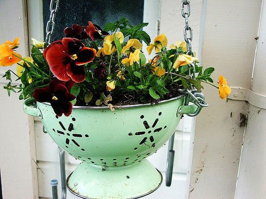 Colander turned planter - I'm thinking how cute this would be hanging in the kitchen with herbs planted in it. Put a bowl in the bottom to avoid water leaks, top with rocks for good  drainage, then the soil & herbs! ❀ Or, forget the bowl and hang it outside the kitchen window✿