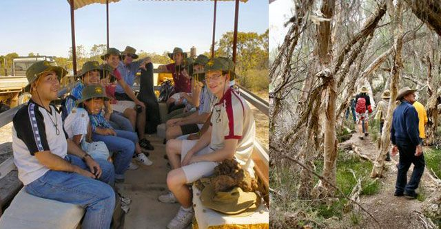 Perth Farm Tour at Boshack Outback - Tractor ride, bush walking in paperbark forest.