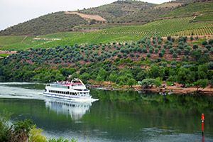 Cruise deals and tips for finding the cheapest cruises.