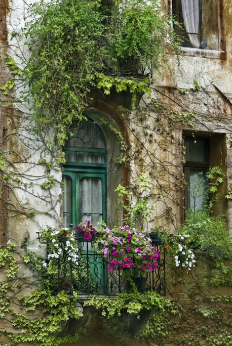 I seriously love this one.: The Doors, Green Doors, Balconies Gardens, Window, Paris Balconies, Paris France, Colors Palettes, House, Flower