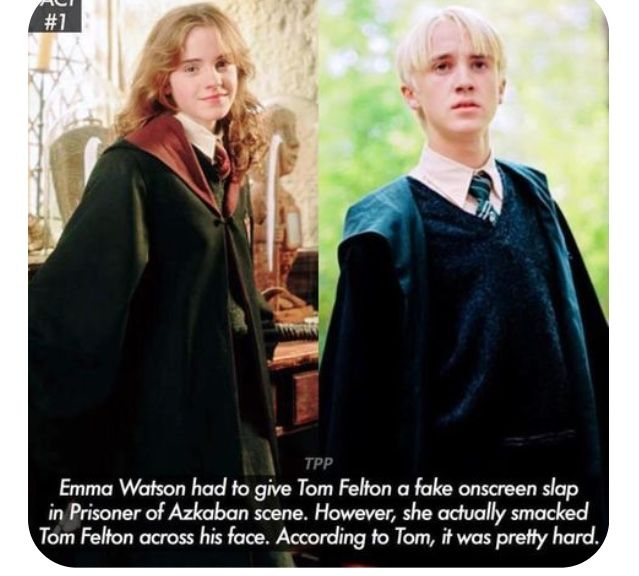 Pin By Pidge On Memes Harry Potter Facts Potter Facts Harry Potter Jokes