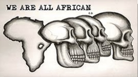 I love this graphic so much. It is such a clever design that Dr. Chris diCarlo inspired. It depicts the evolution of the human race from sub-Saharan Africa over the past 200,000 years.