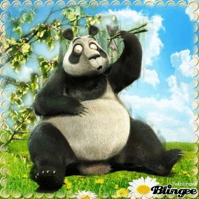 Giant Panda Information Funny Gif #9261 - Funny Panda Gifs| Funny Gifs| Panda Gifs
