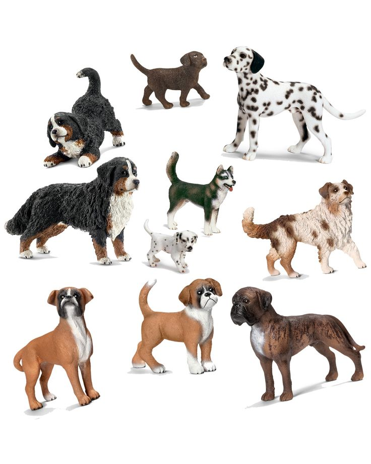 """Spotted this Schleich """"Dogs"""" 10pc Toy Set on Rue La La. Shop (quickly!)."""