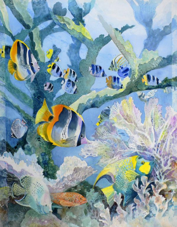 coral reefs – Margy Gates Art