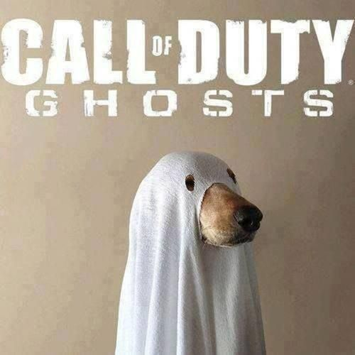Call of Duty Ghosts Cosplay - the link doesn't work. but I love the pic XD