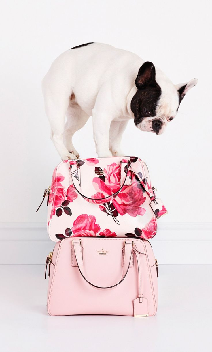 stick with me, babe. discover the cameron street collection from kate spade new york.