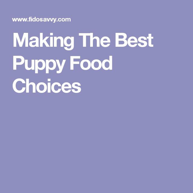 Making The Best Puppy Food Choices