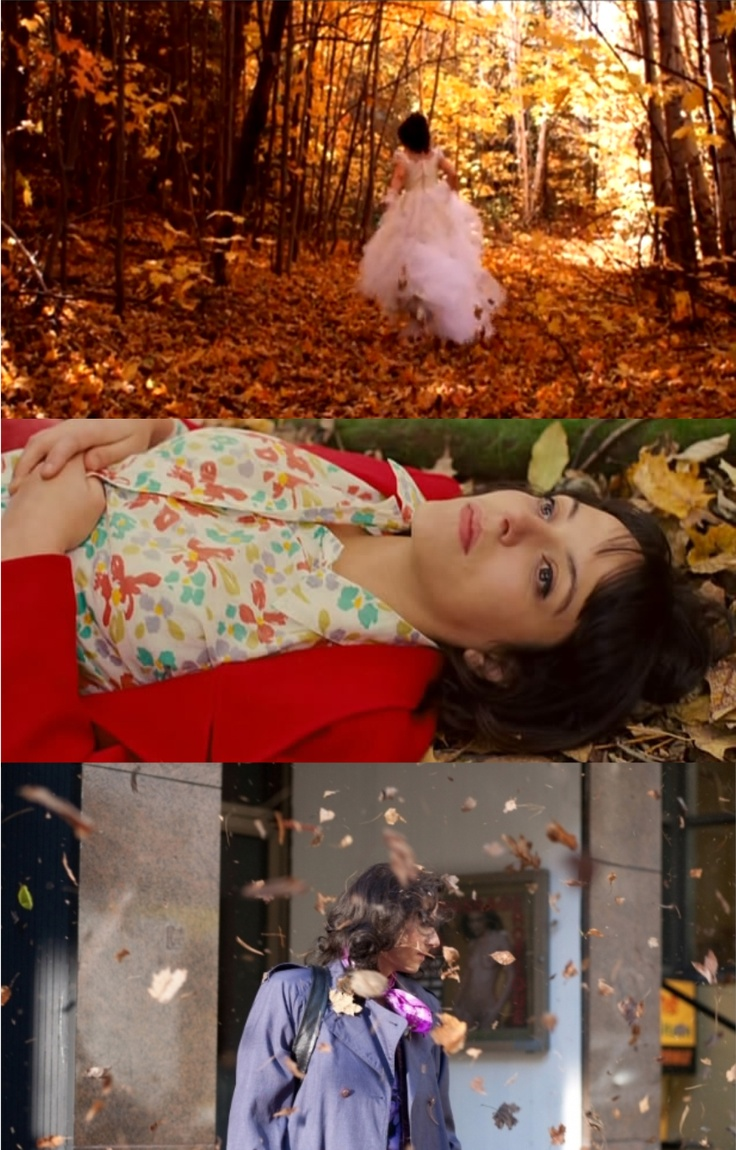 Leafs and autumn in J'ai tue ma mere, Les amours imaginaires and Laurence Anyways by Xavier Dolan