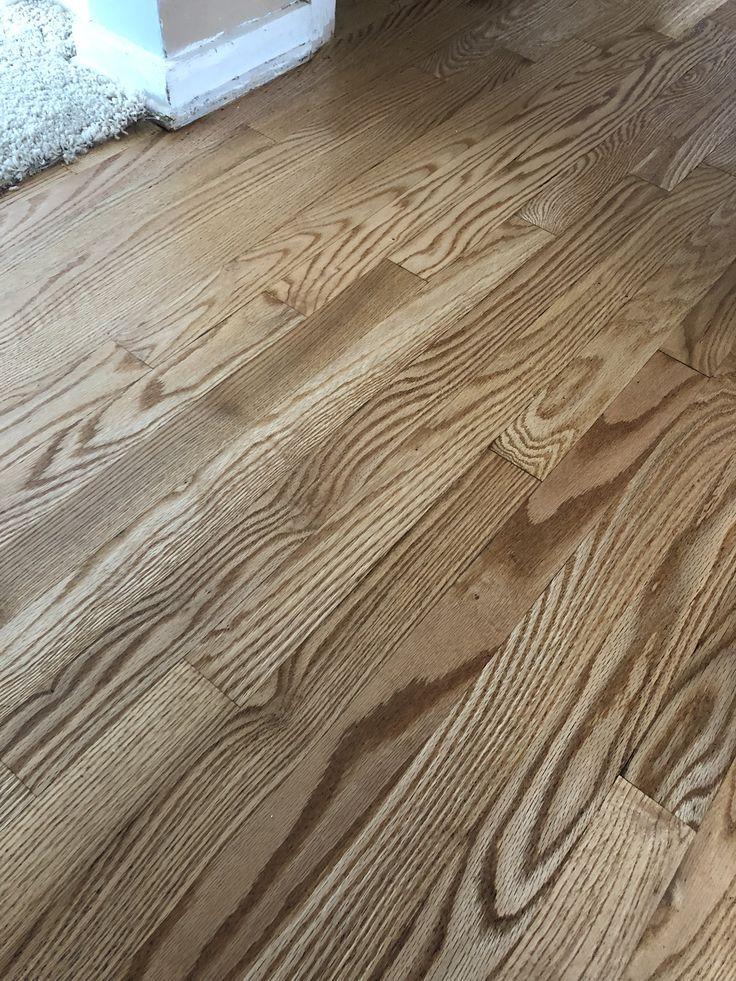 Natural Hard Wood Floor Refinish Water Based Finish Bona Traffic