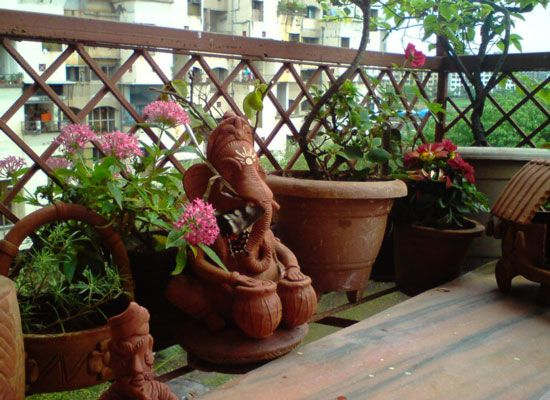Balcony gardens in india google search gardening for Balcony zen garden ideas