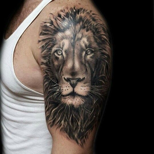 45 best lion tattoo drawing images on pinterest simple lion tattoo animal tattoos and. Black Bedroom Furniture Sets. Home Design Ideas
