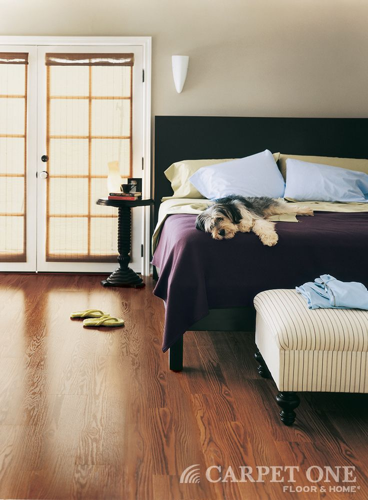 comfy casual bedroom with laminate floors from carpet one