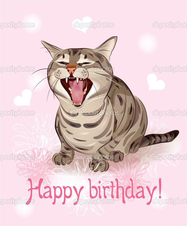 Funny Birthday Wishes Pink: Free Happy Birthday Cat Greetings