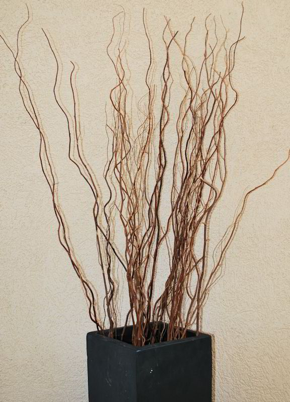 1000 ideas about willow branches on pinterest willow for A decoration that is twisted intertwined or curled